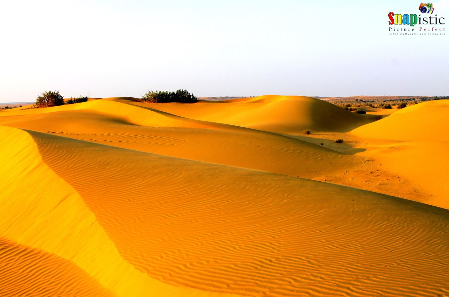 The Great Indian Desert: THAR | LifeTimeMusafir com